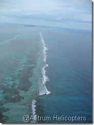 The Barrier Reef
